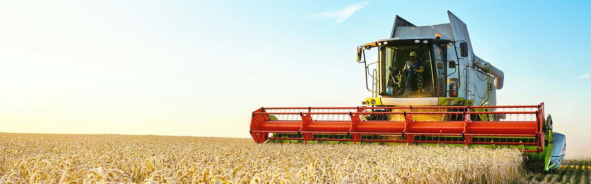 Ein weltweit agierender Produzent von Pflanzenschutzmitteln