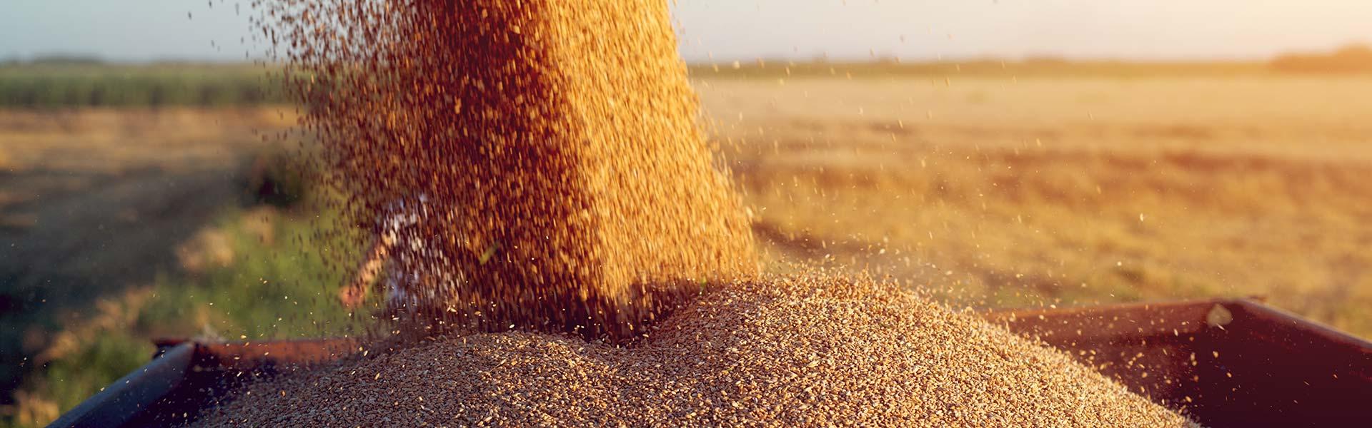 Der Landwirtschaft in Deutschland verpflichtet